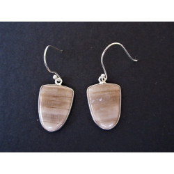 Boucles d'oreilles en bois fossilisé